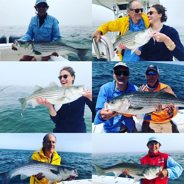 Great crew the last few days! Big bass still biting into late July! #billfisheroutfitters #billfishertackle #nantucket # stripedbass #regularormarine