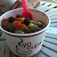 Yo Cups cup.jpg