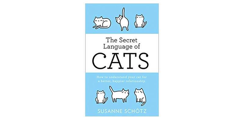 secret-cats-header_1024x.jpg