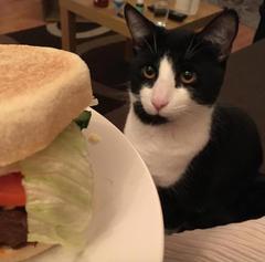 ernest-burger_medium.jpg