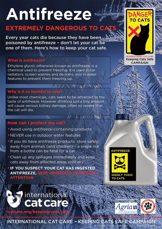 antifreeze-campaign-poster_web_1024x.jpg