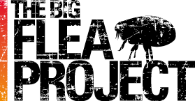 bfp-logo-big_2_0.png