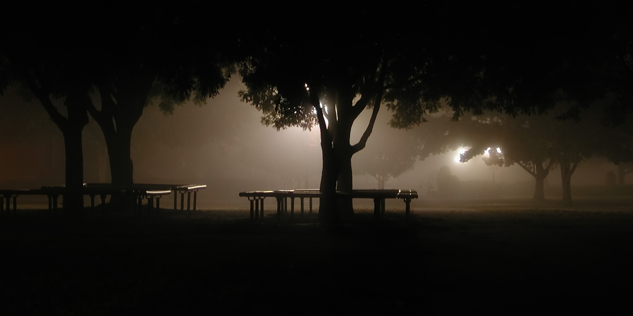 Fog 6.jpg