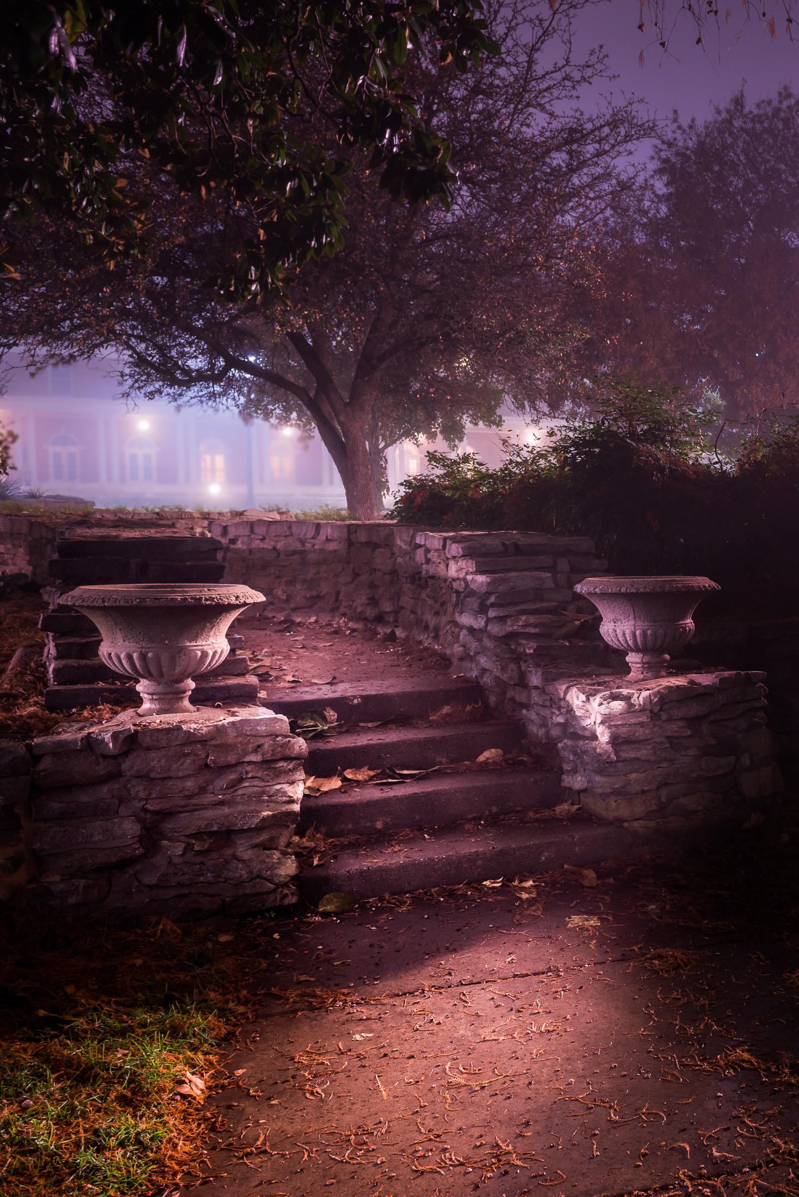 Fog 7a.jpg