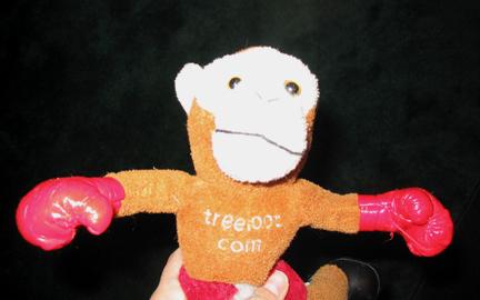 Monkey Close-Up.jpg