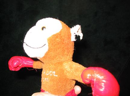 Monkey Right Ear.jpg