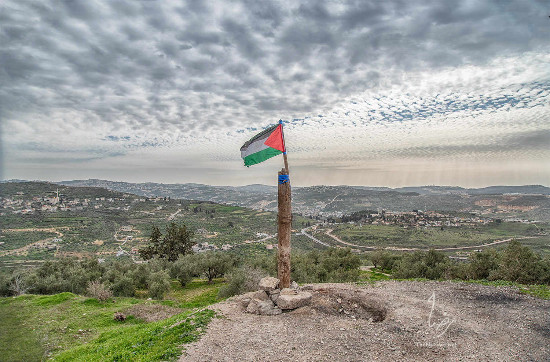 Lets Talk Palestine