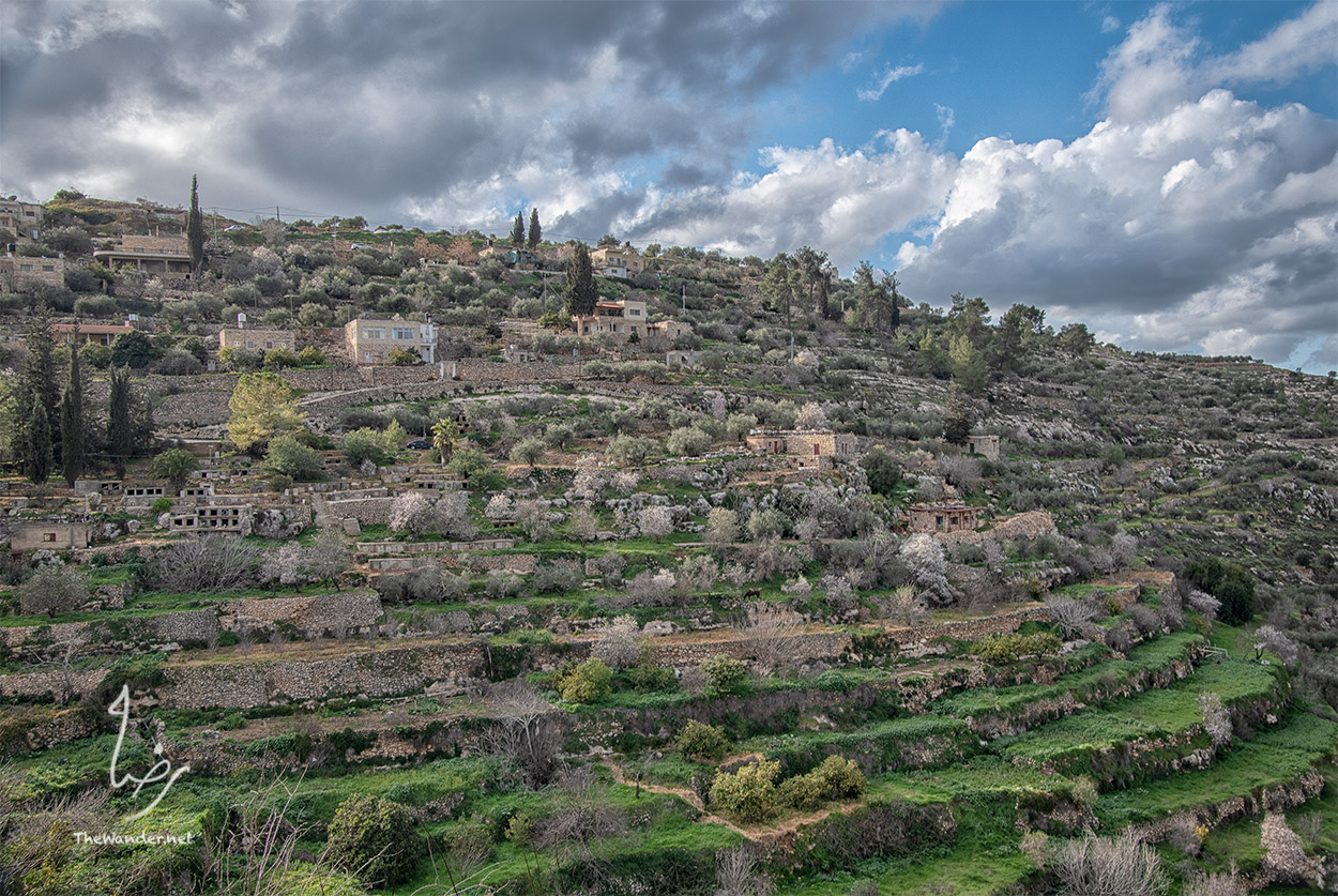 Battir Terraces
