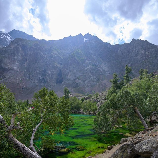 Naltar Lake, Gilgit-Baltistan, Pakistan 🇵🇰 #pakistan #naltarlake #gilgitbaltistan #nature