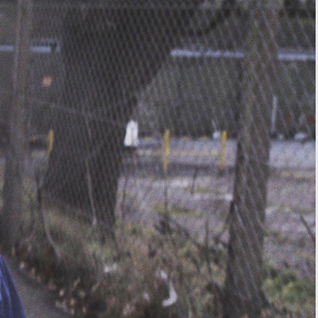 We Got our first Film Festival Submission!! @lift.off.film.festivals  Dir. @jamesadams.film  Prod Des. @amandajanefilm . . . . . . #filmmaking #like #filmmaker #cinematography #film #videography #cinematographer #indiefilm #filmmakers #director #videoproduction #videographer #filmschool #supportindiefilm #videomaking #filming #movies #nollywood #videocamera #AorB #onset #celebritiescorner #follow #premierepro #celebrityhousemates #celebrityhousematesrealitytvshow #filmset #producer #setlife #bhfyp