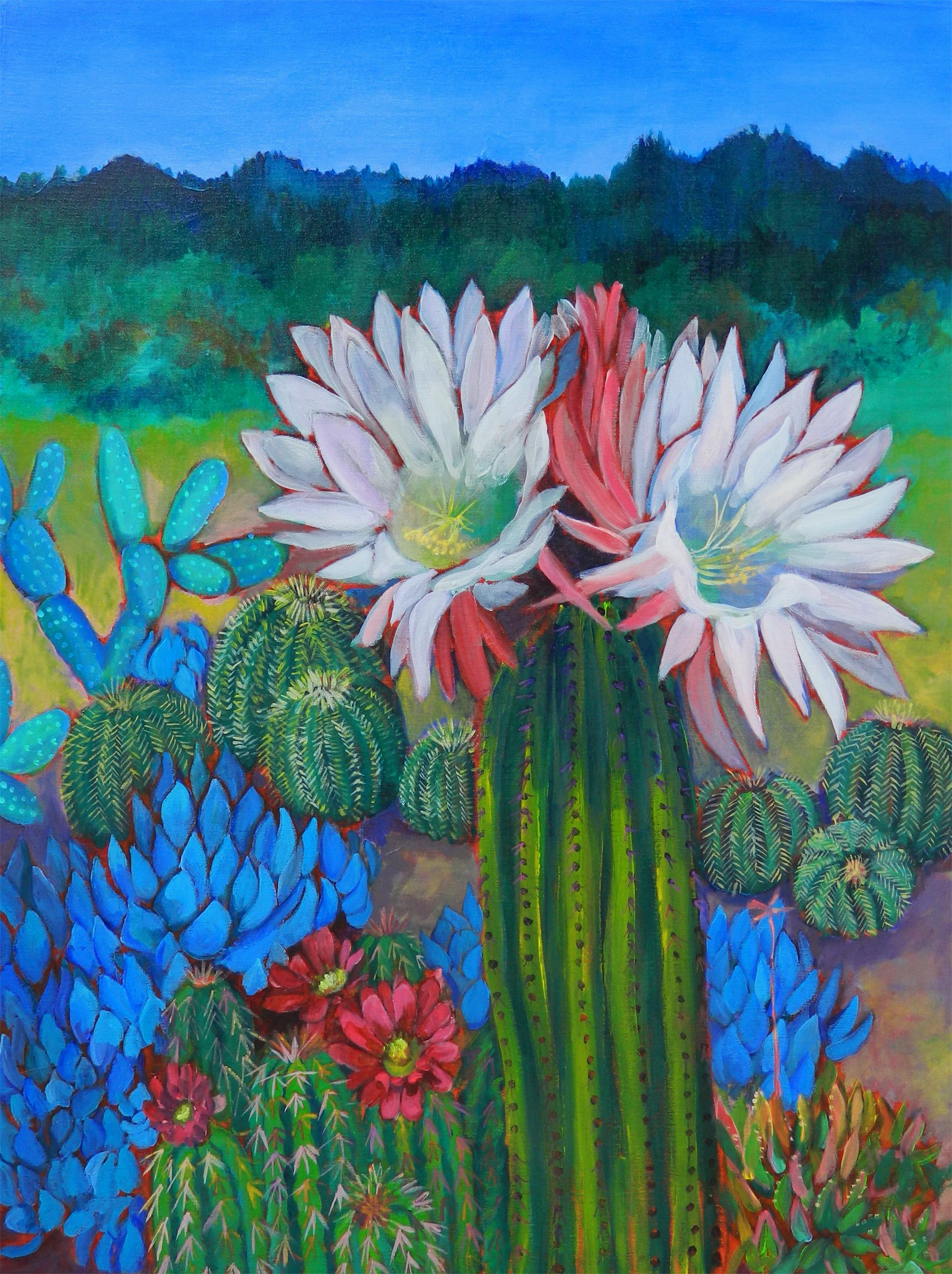 cactus flower santa cruz-wd.jpg