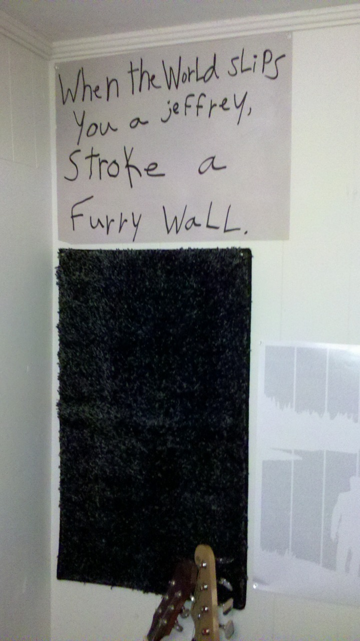 Just hung this up in my room.   Furry carpet on my wall.   When the world slips you a jeffrey, stroke a furry wall.