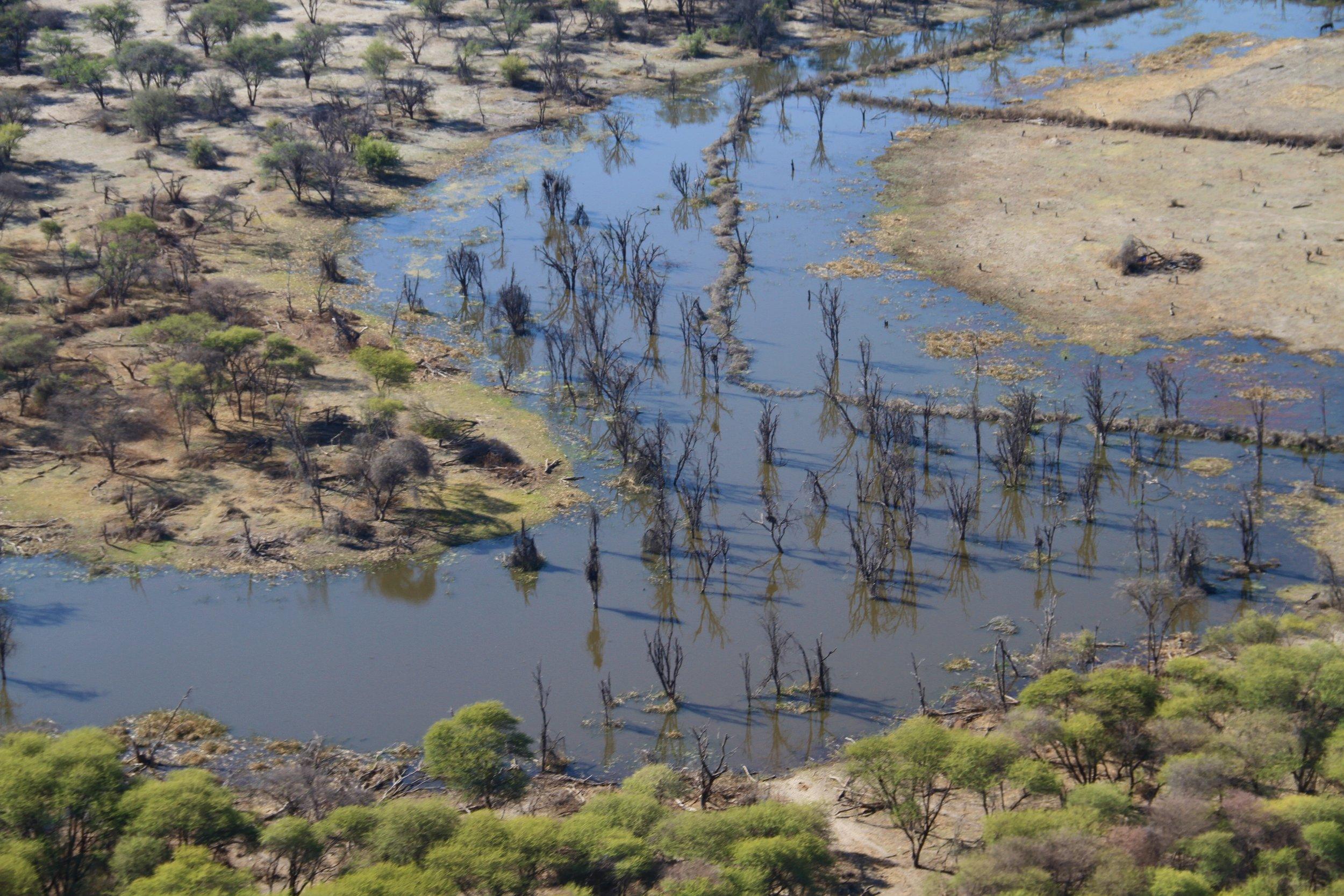 Botswana.jpeg