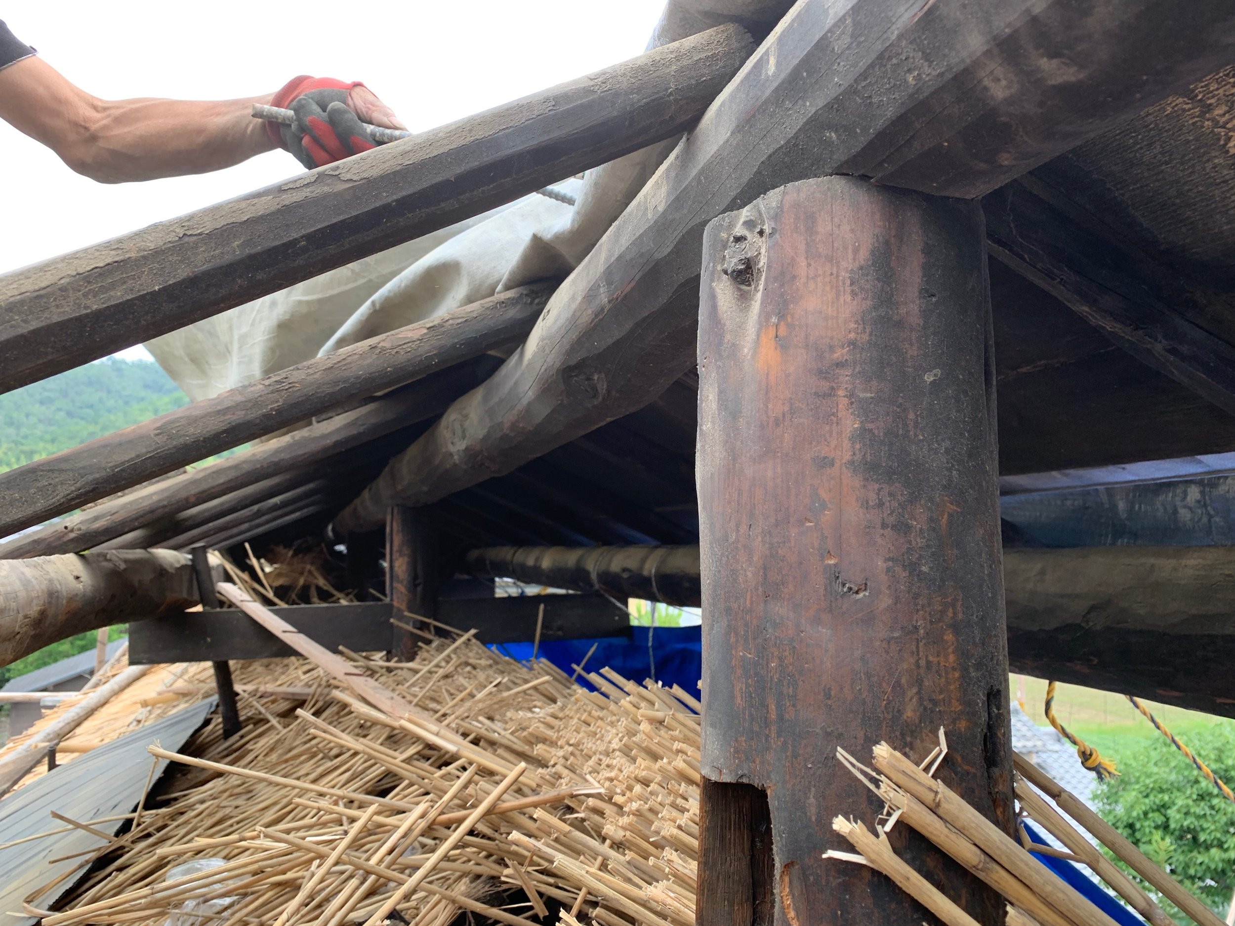 垂木のほとんどが腐ったり虫がはいってたりで全滅。棟梁に慣れない足場と高所作業で垂木と野地の張替をお願いしました。