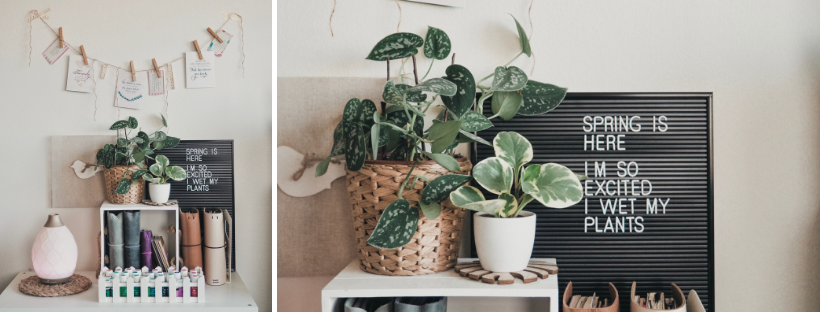 My Plant Fam: What I've Learned in My First Year as a Plant Mom | tawnimarie.com | yearoneplantmom_livingroomD_tawnimarie.png