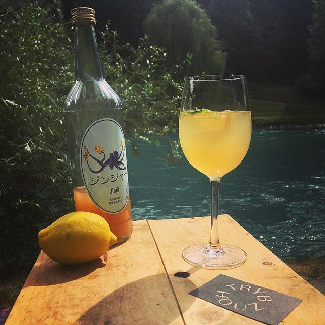 Erfrischend und abkühlend! Unser TSCHUGO mit Jinja, Prosecco, Holundersirup, Minze und Zitrone!💥🍋 #ingwerspriz #aare #besseralshugo #trybhouzbar #trybhouz #bärn #bern #tschugo #jinjalikör