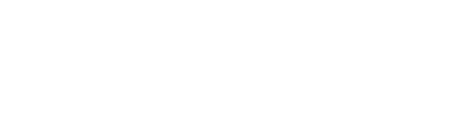regionalmedialogo.png
