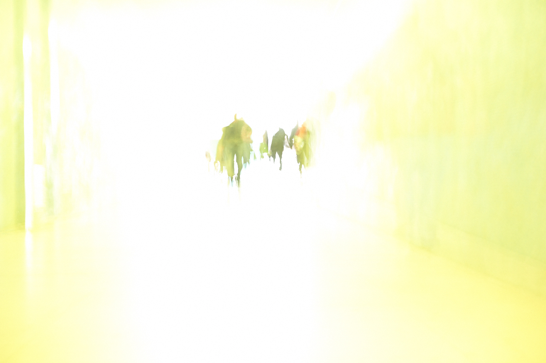 Belem 29.12.2013 003.jpg