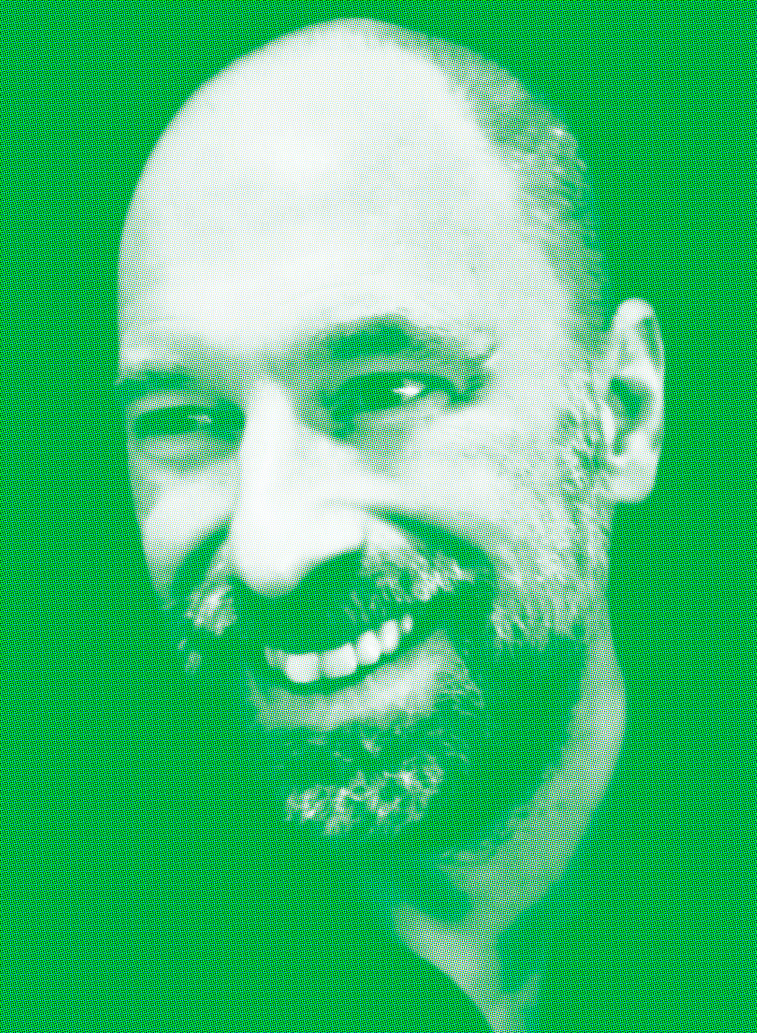 MJF-Author-Photo-HIGHRES_Green_Halftone.png
