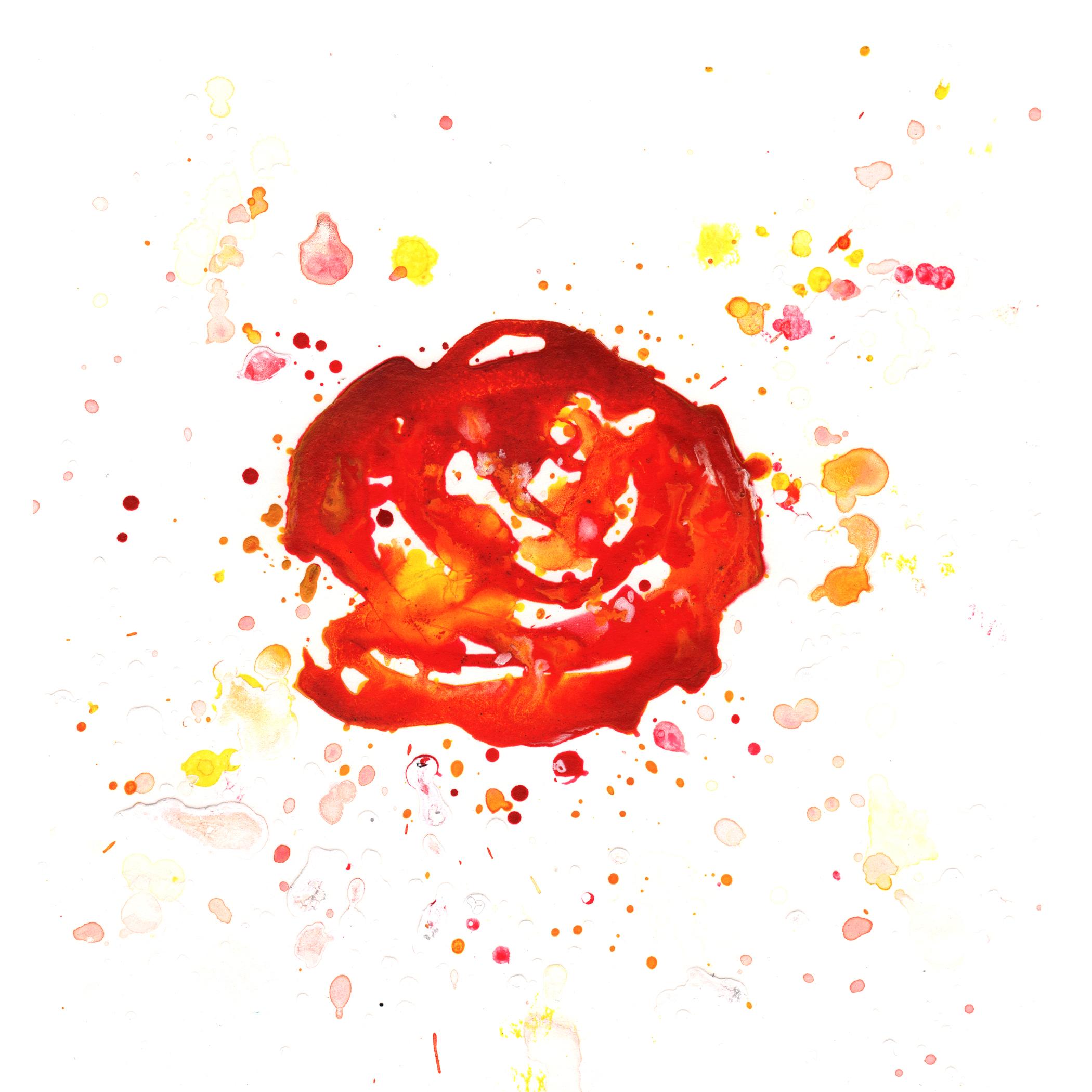 3.Orange.Rose.2.11.14.jpg