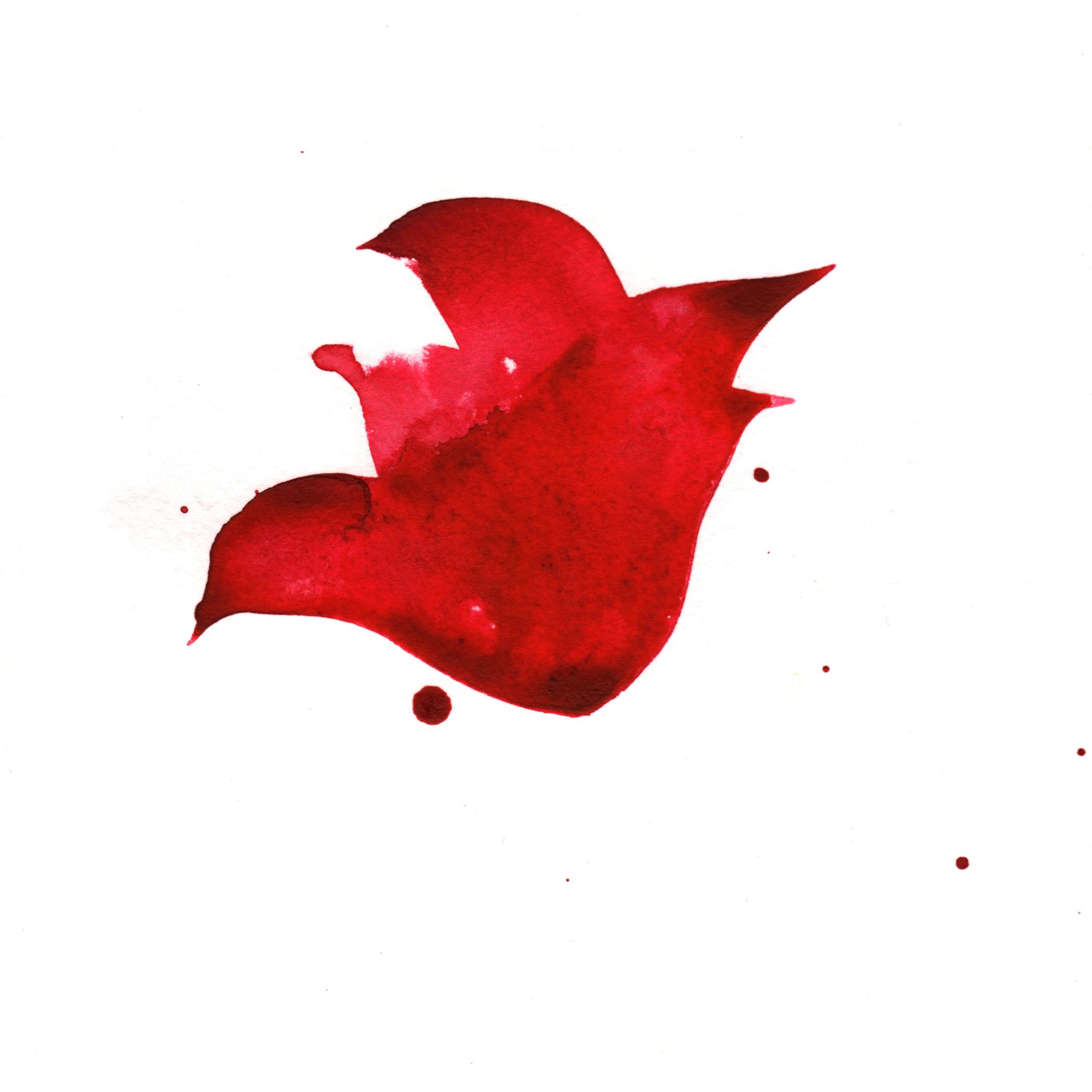 8.Tulip.2.16.14.jpg