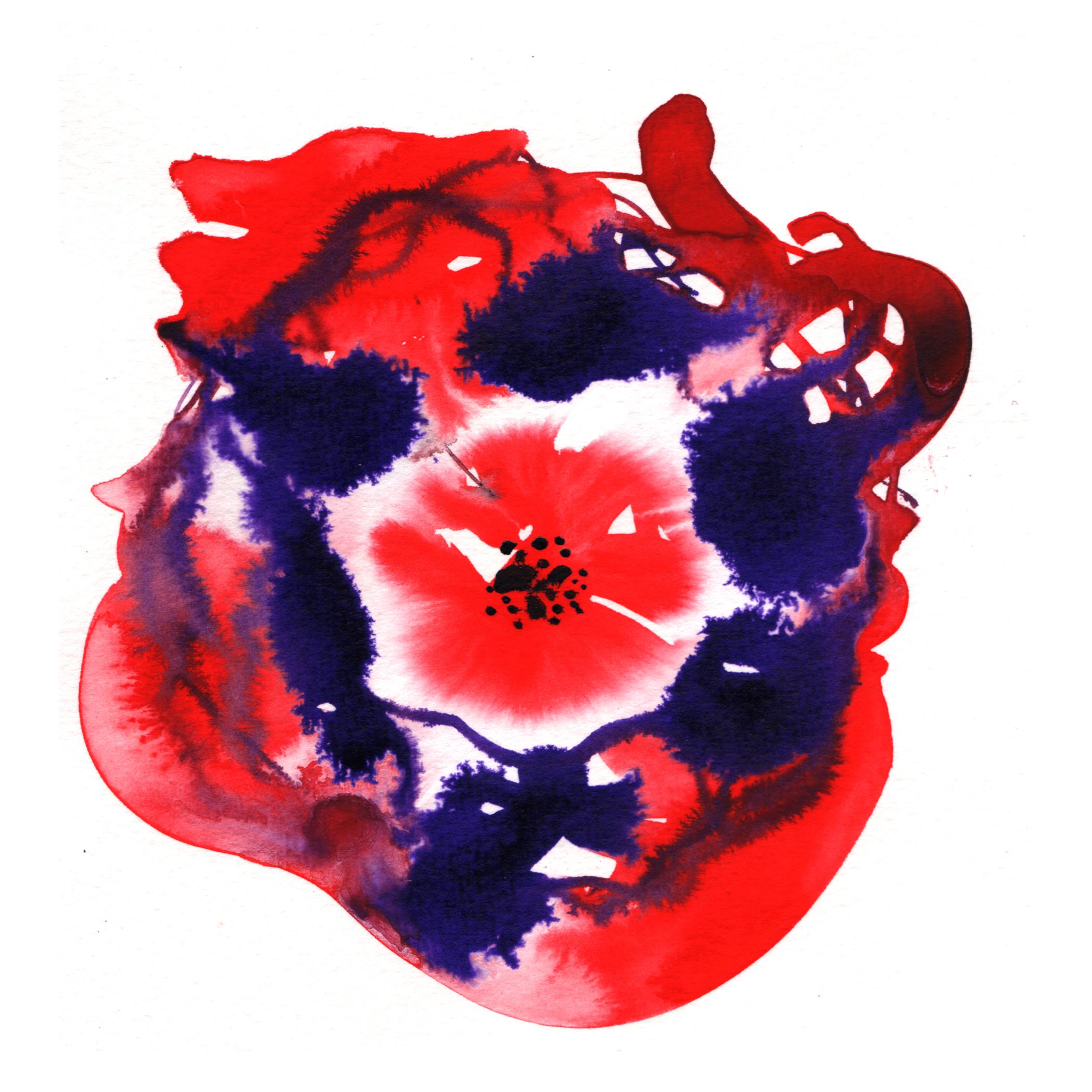 26.Hibiscus.3.6.14.jpg