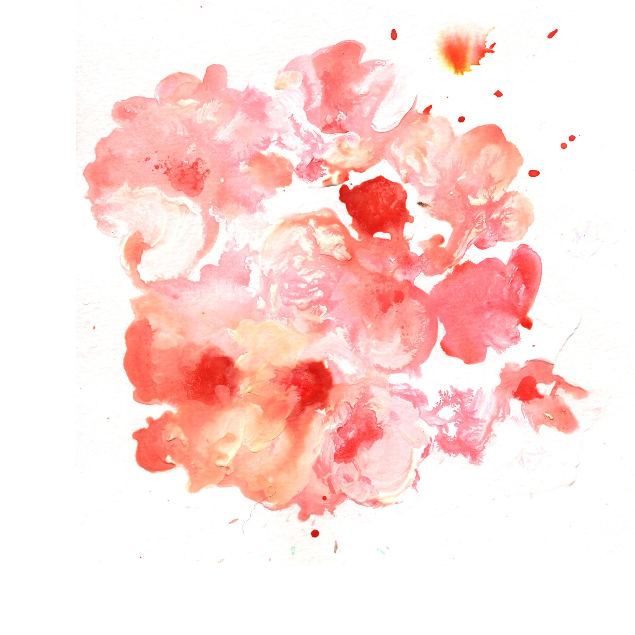 30.Wild.Roses.3.10.14.jpg