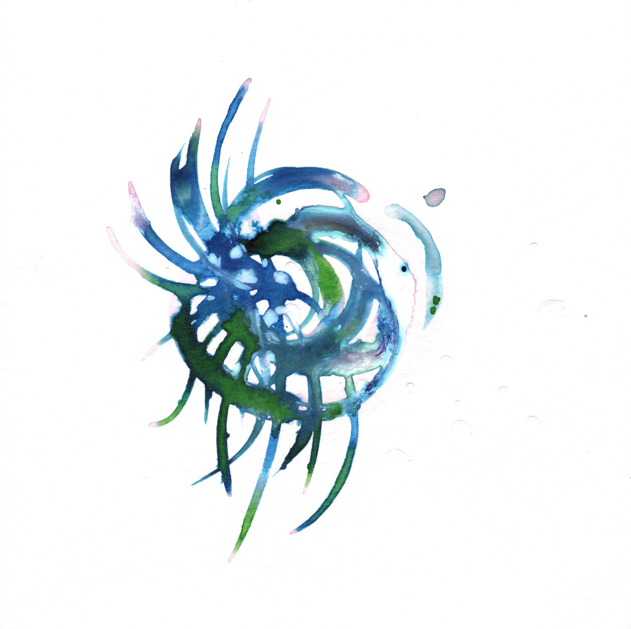 42.Bromeliad.3.22.14.jpg