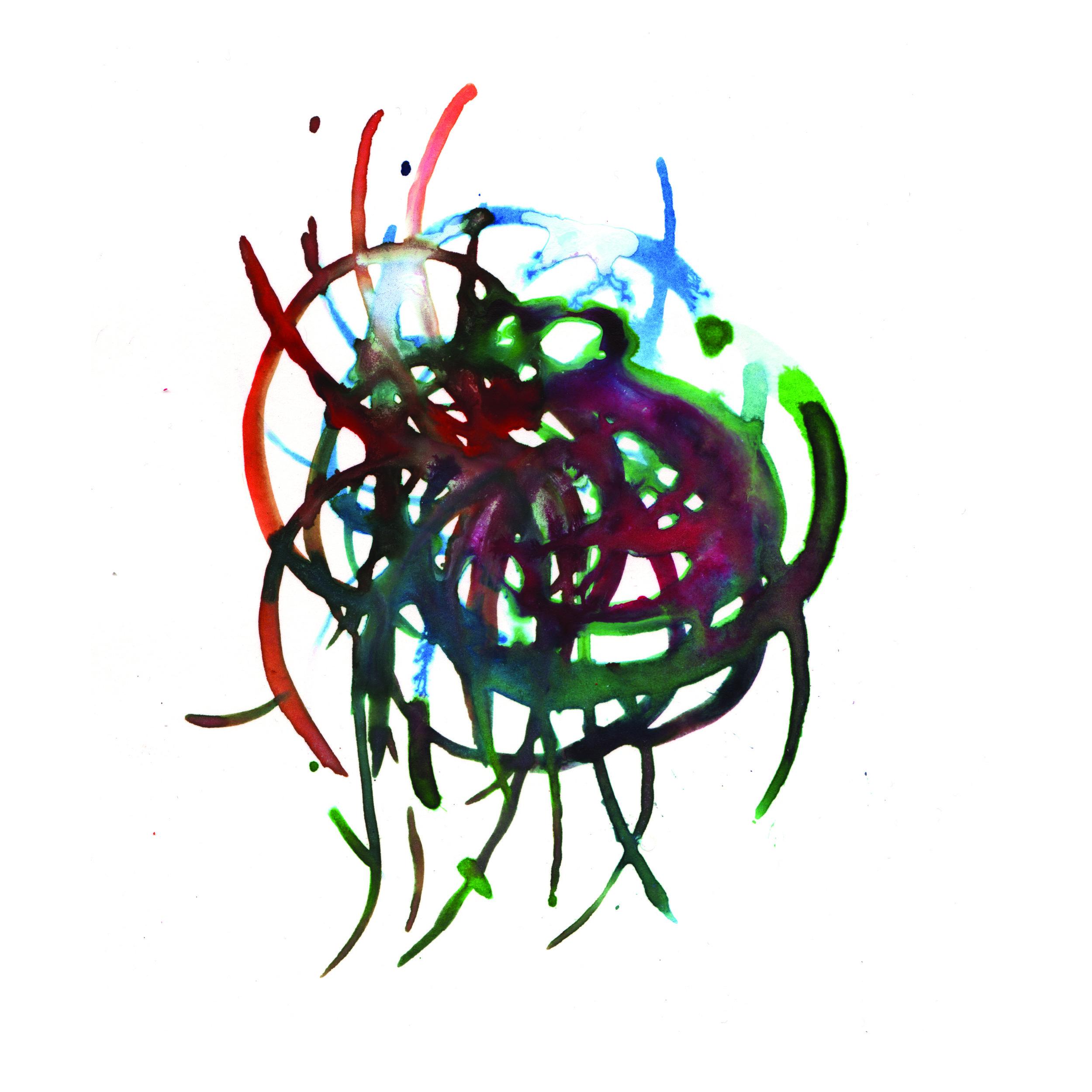 41.Bromeliad.3.21.14.jpg