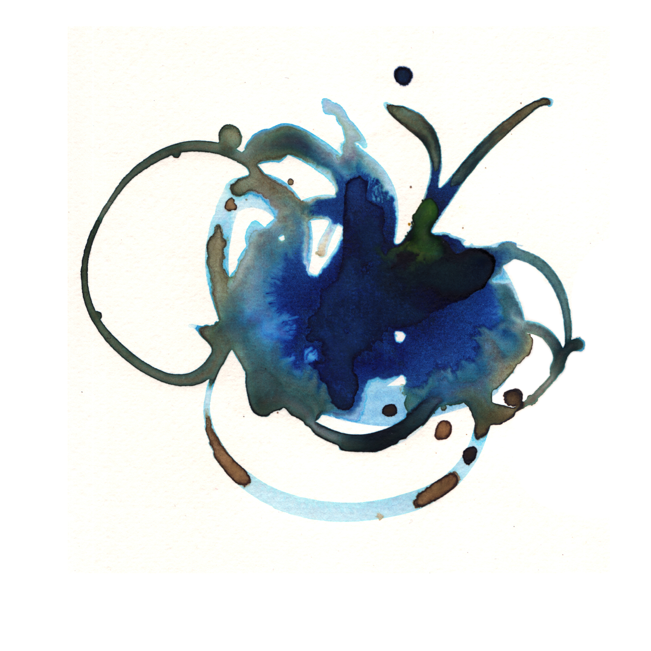 45.Blue.Lily.3.25.14.jpg