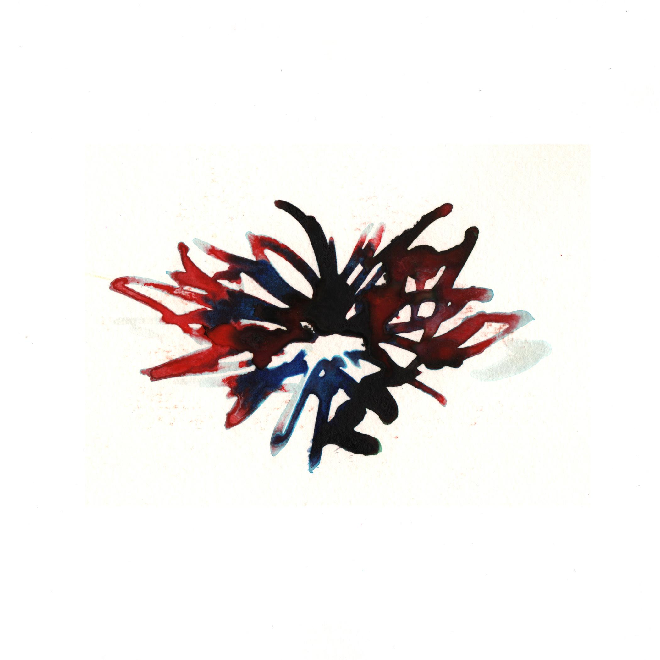51.Narsissus.3.31.14.jpg