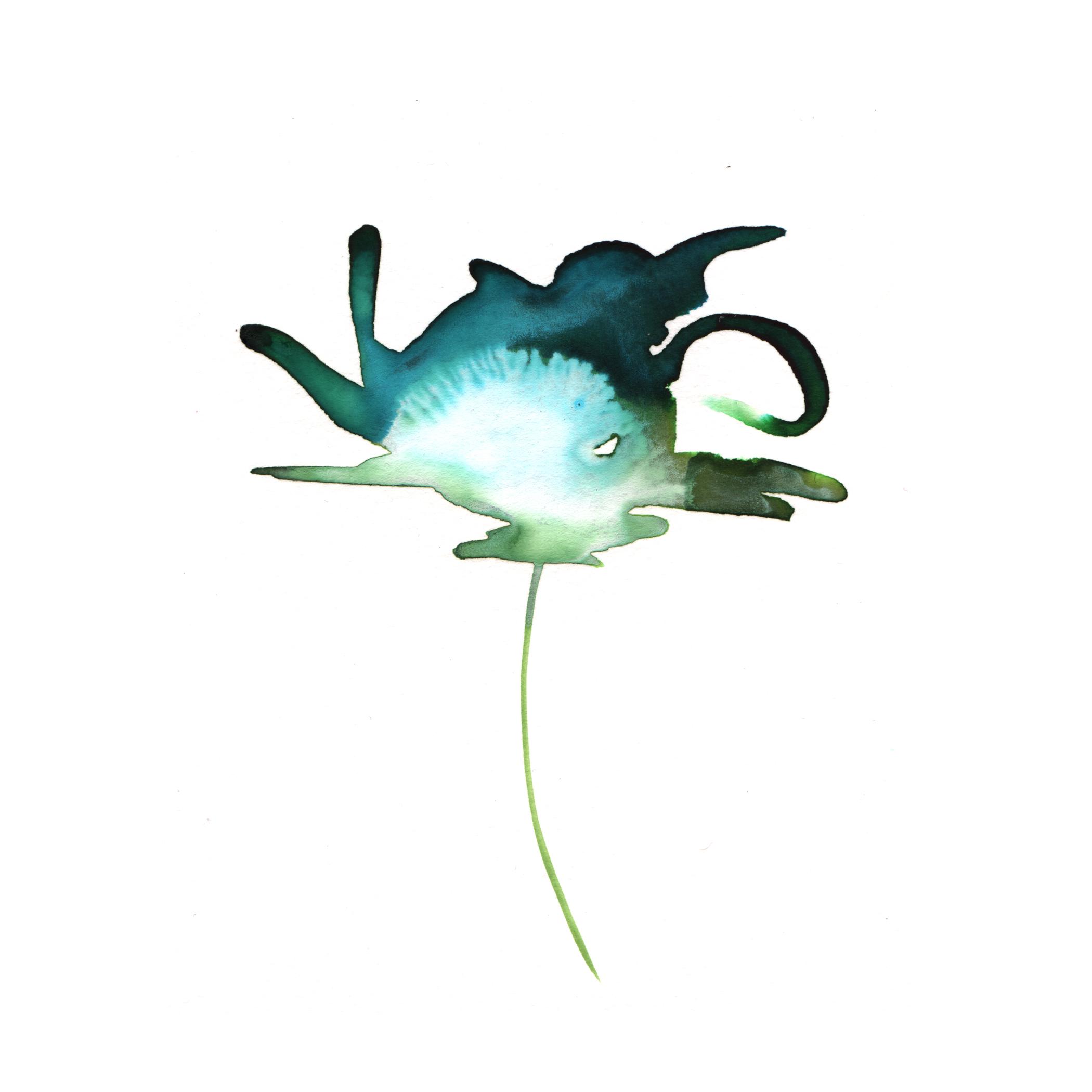 59.Lily.Pad.4.8.14.jpg