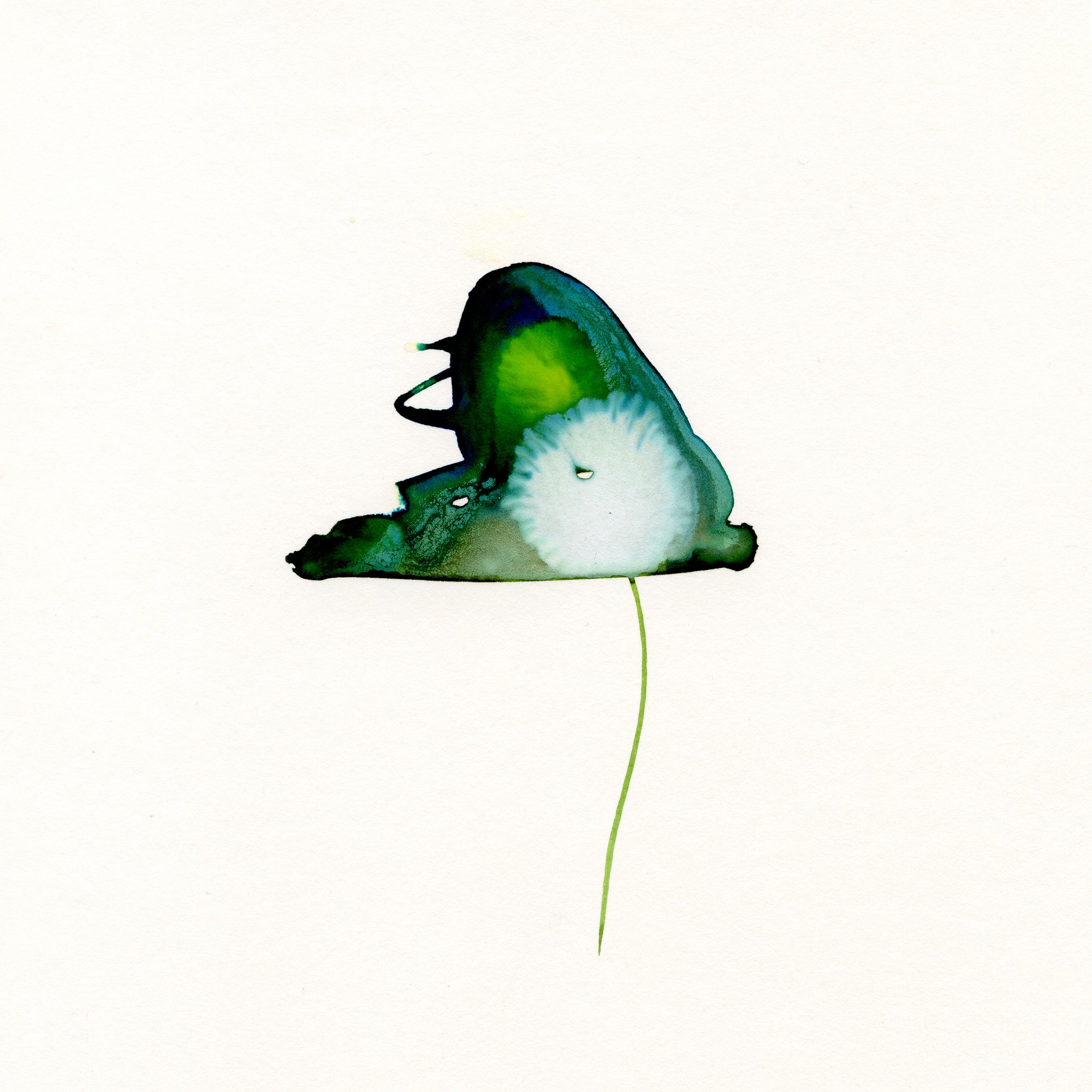 61.Lily.Pad.4.10.14.jpg