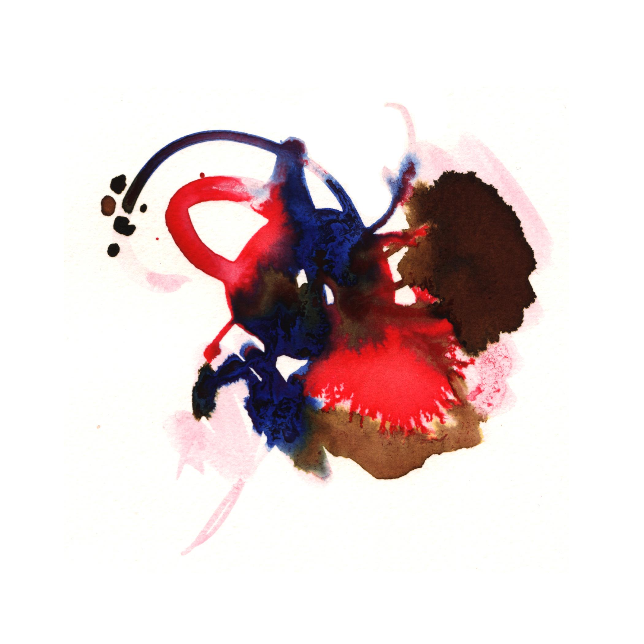66.Hibiscus.4.15.14.jpg