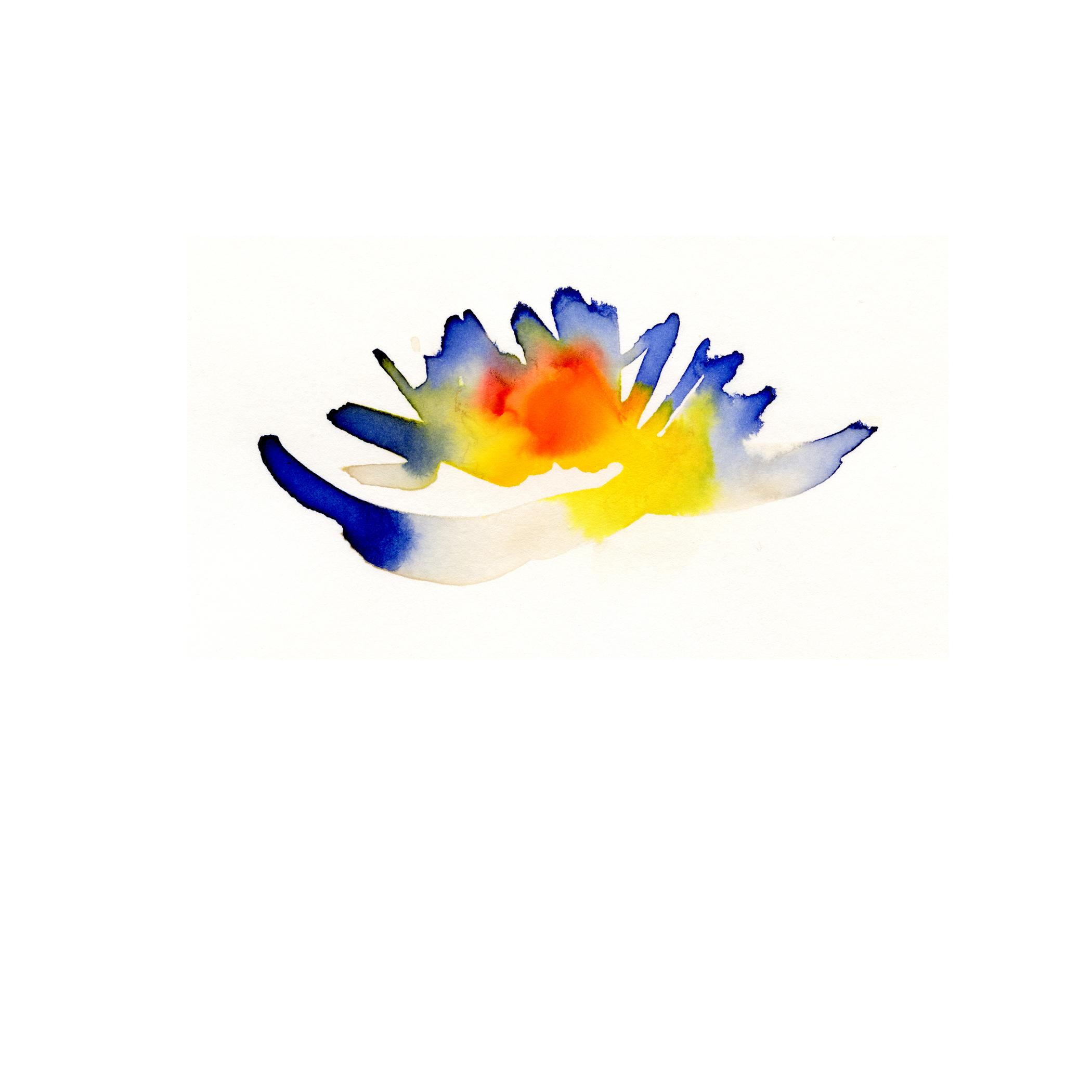 83.Ambrosia.Water.Lily.5.2.14.jpg