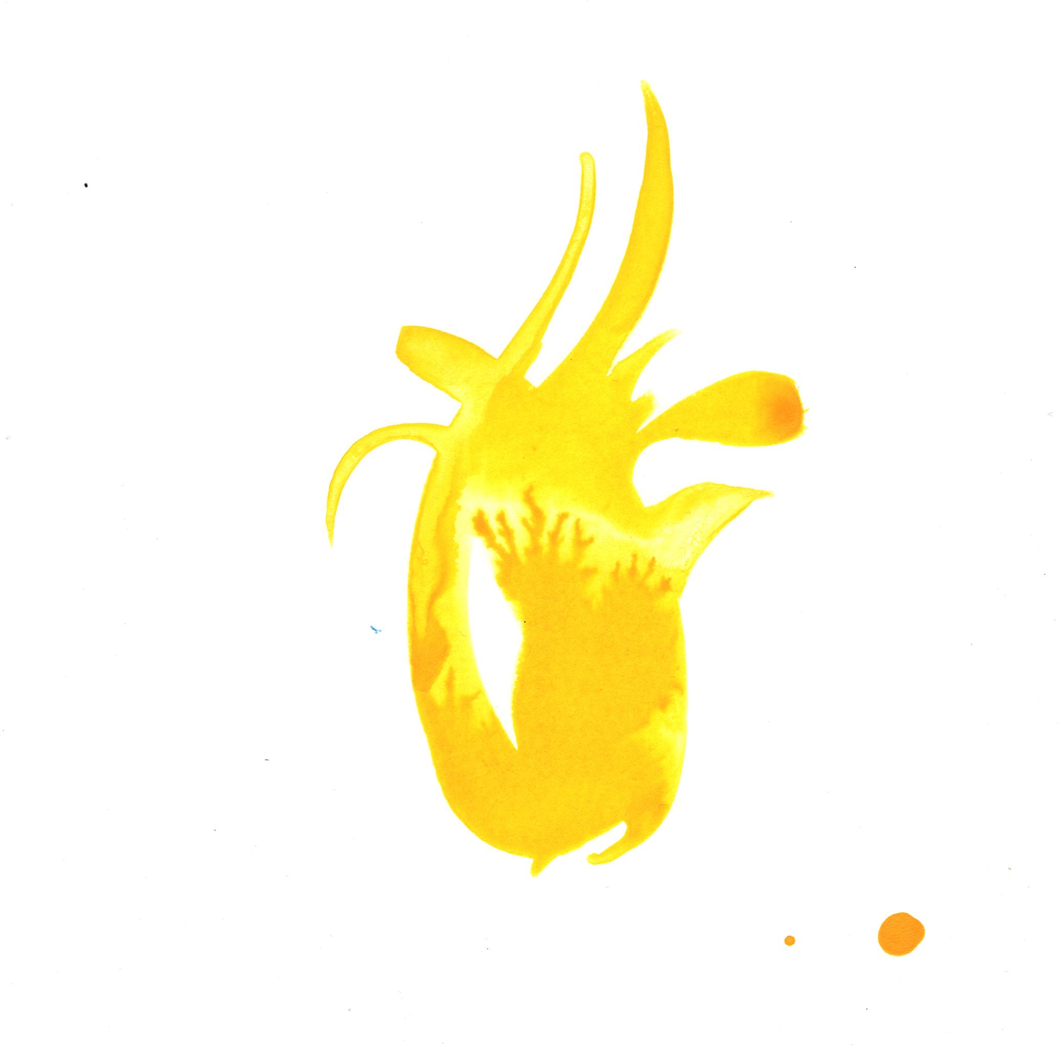 103.Lily.5.22.14.jpg