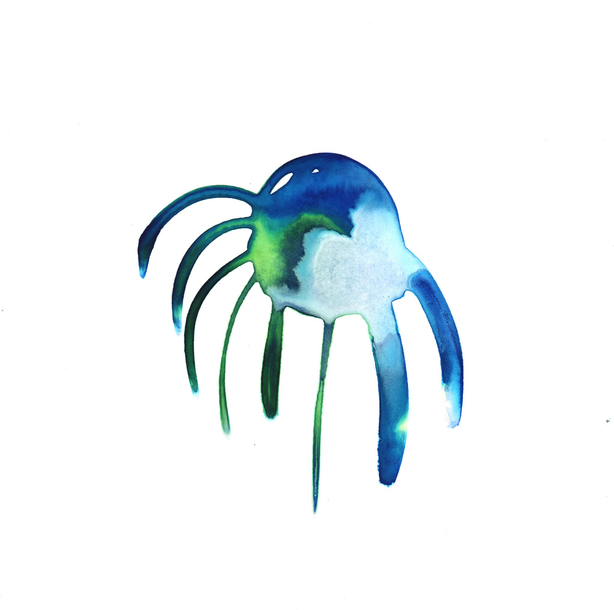 137.Orchid.6.25.14.jpg