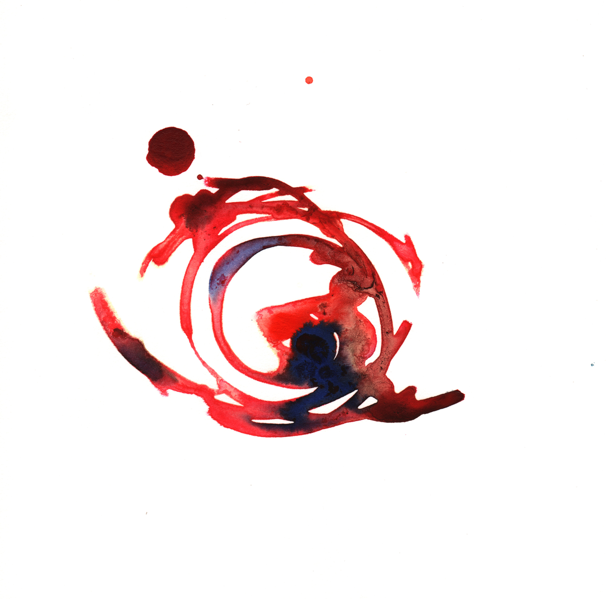 139.Rose.6.27.14.jpg