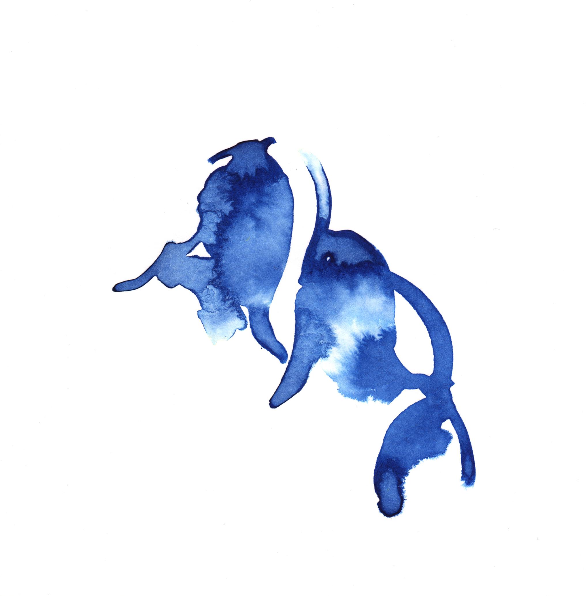 143.Blue.Bells.7.1.14.jpg