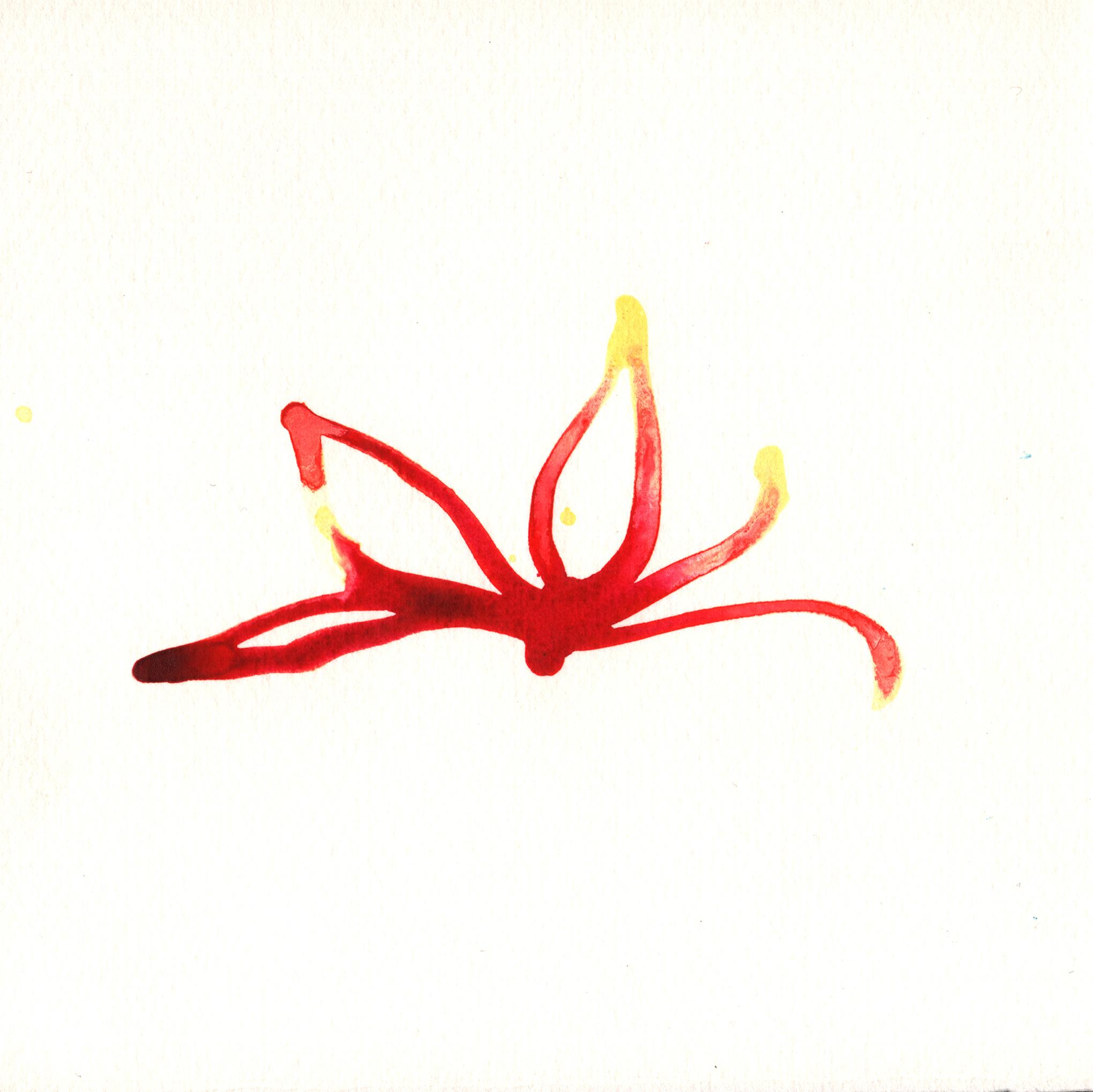 147.Lotus.7.5.14.jpg