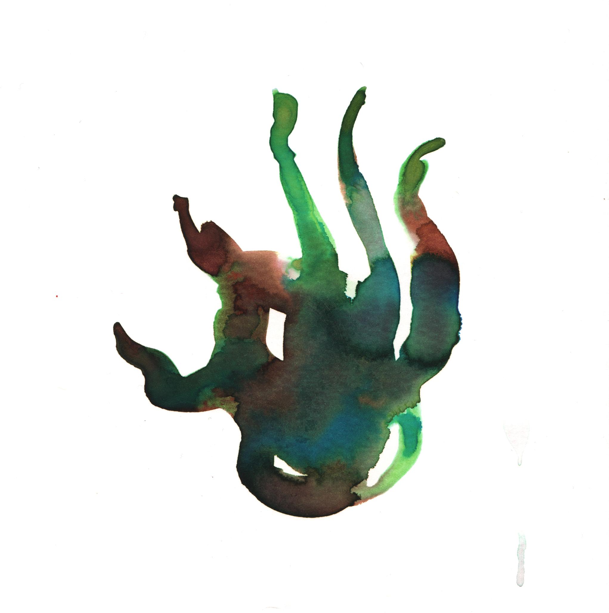 157.Giant.Kelp.7.15.14.jpg