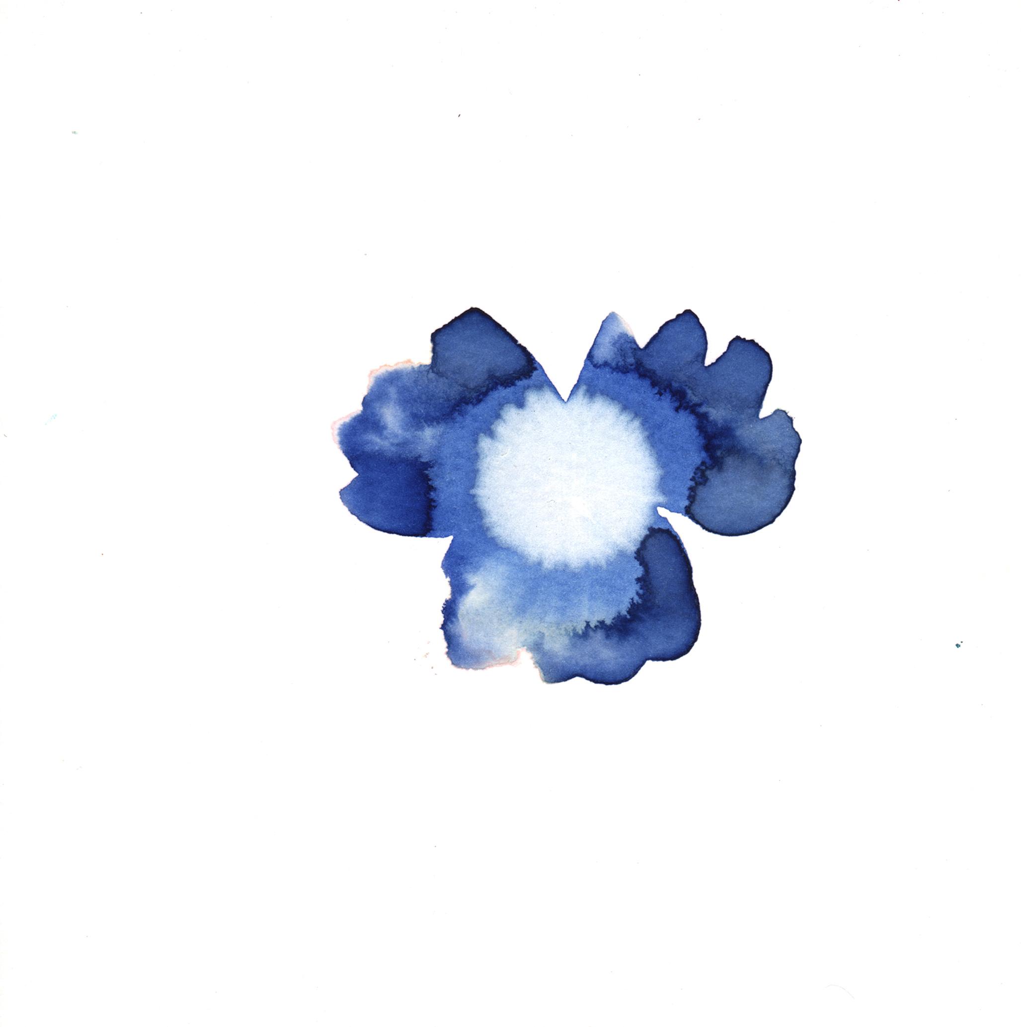 160.Viola.7.18.14.jpg