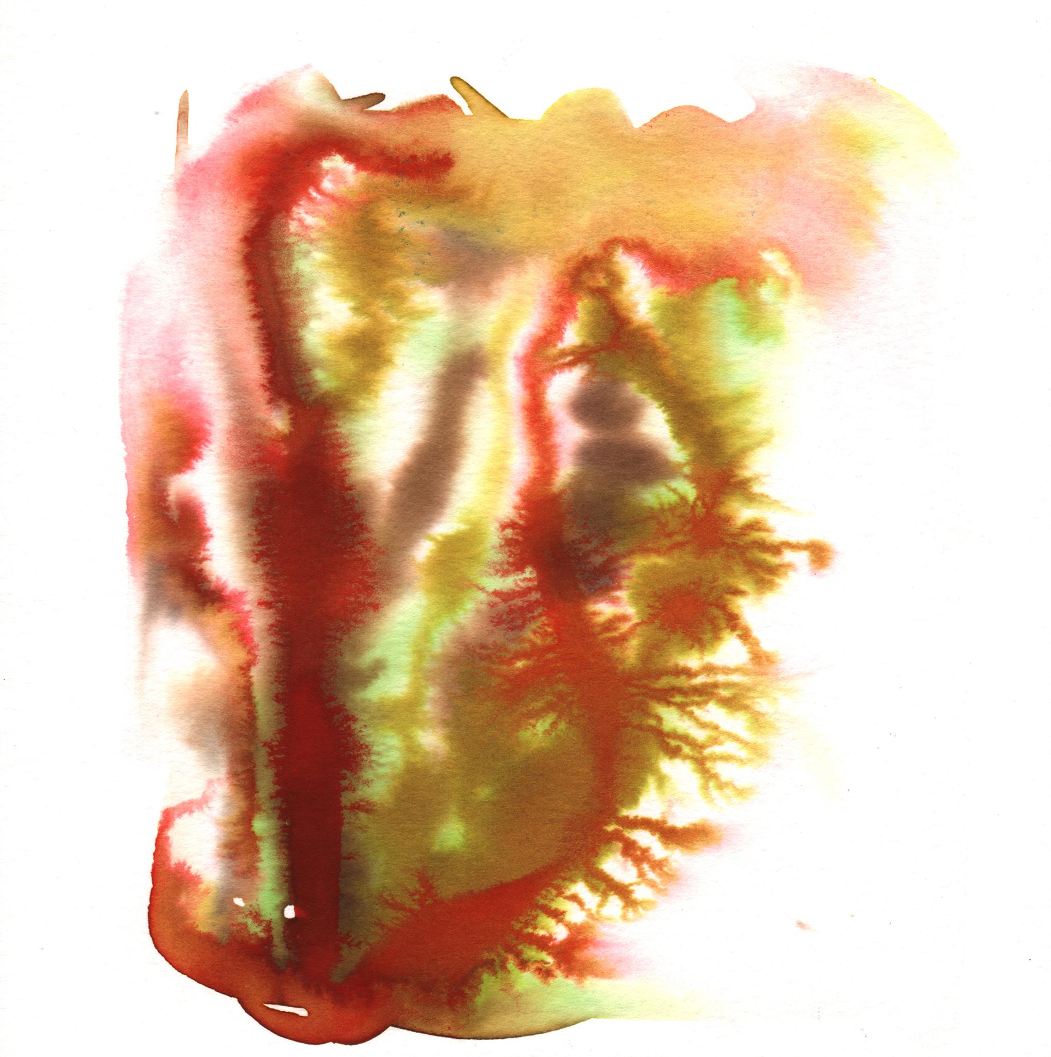 168.Kelp.7.26.14.jpg