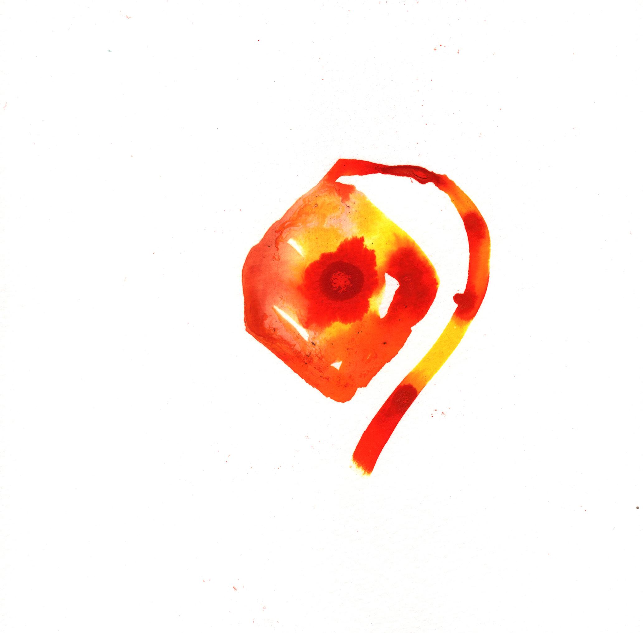 171.Chinese.Lantern.7.29.14.jpg