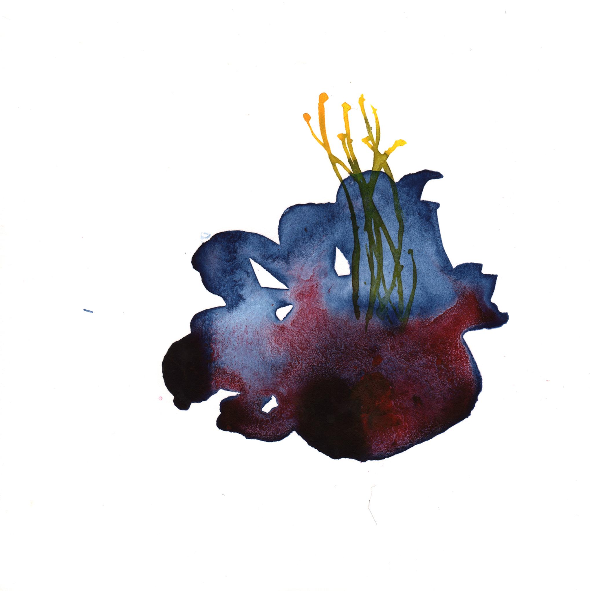 197.Blue.Pod.Flower.8.24.14.jpg