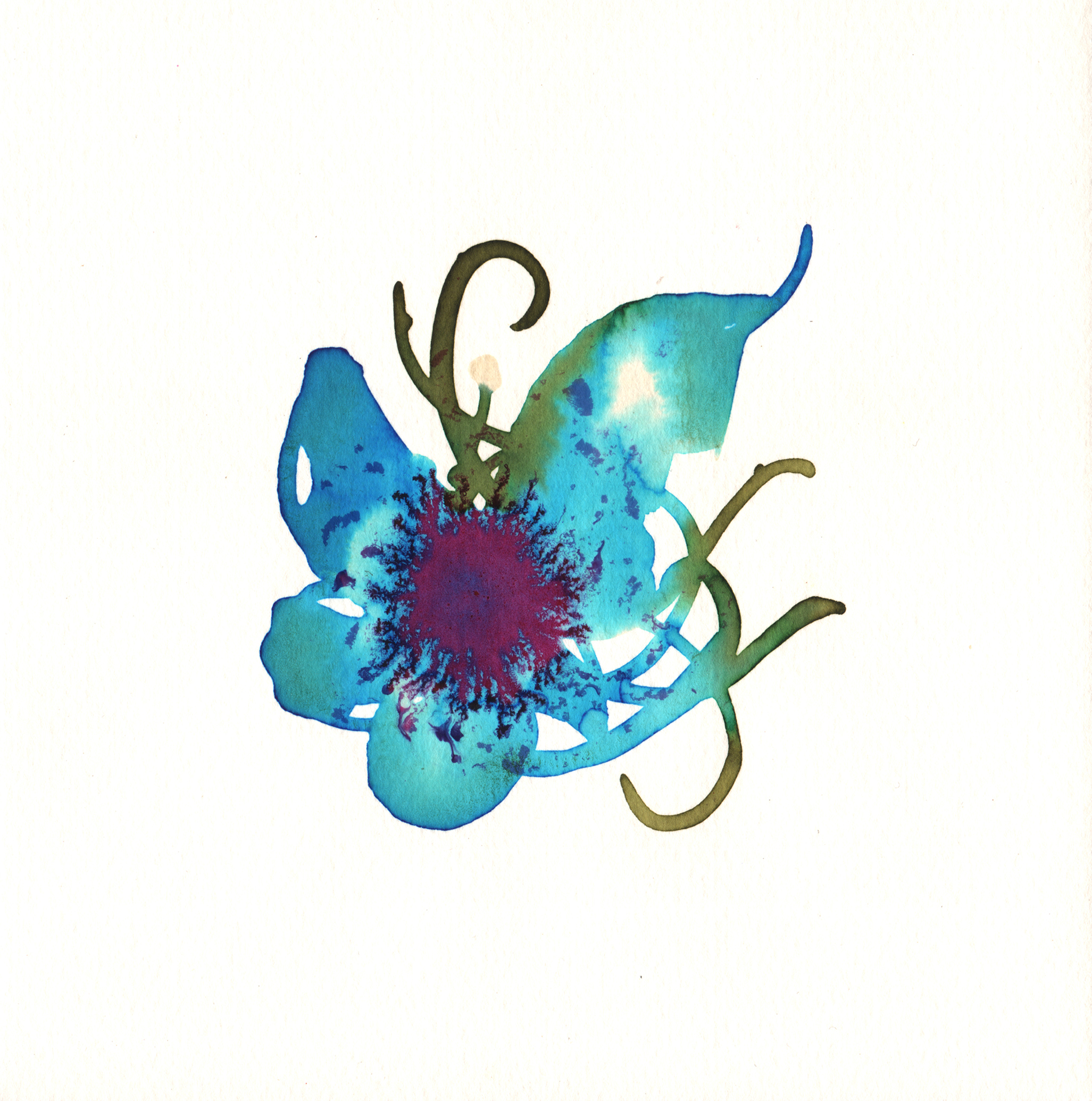 216.Fairy.Flower.9.12.14.jpg