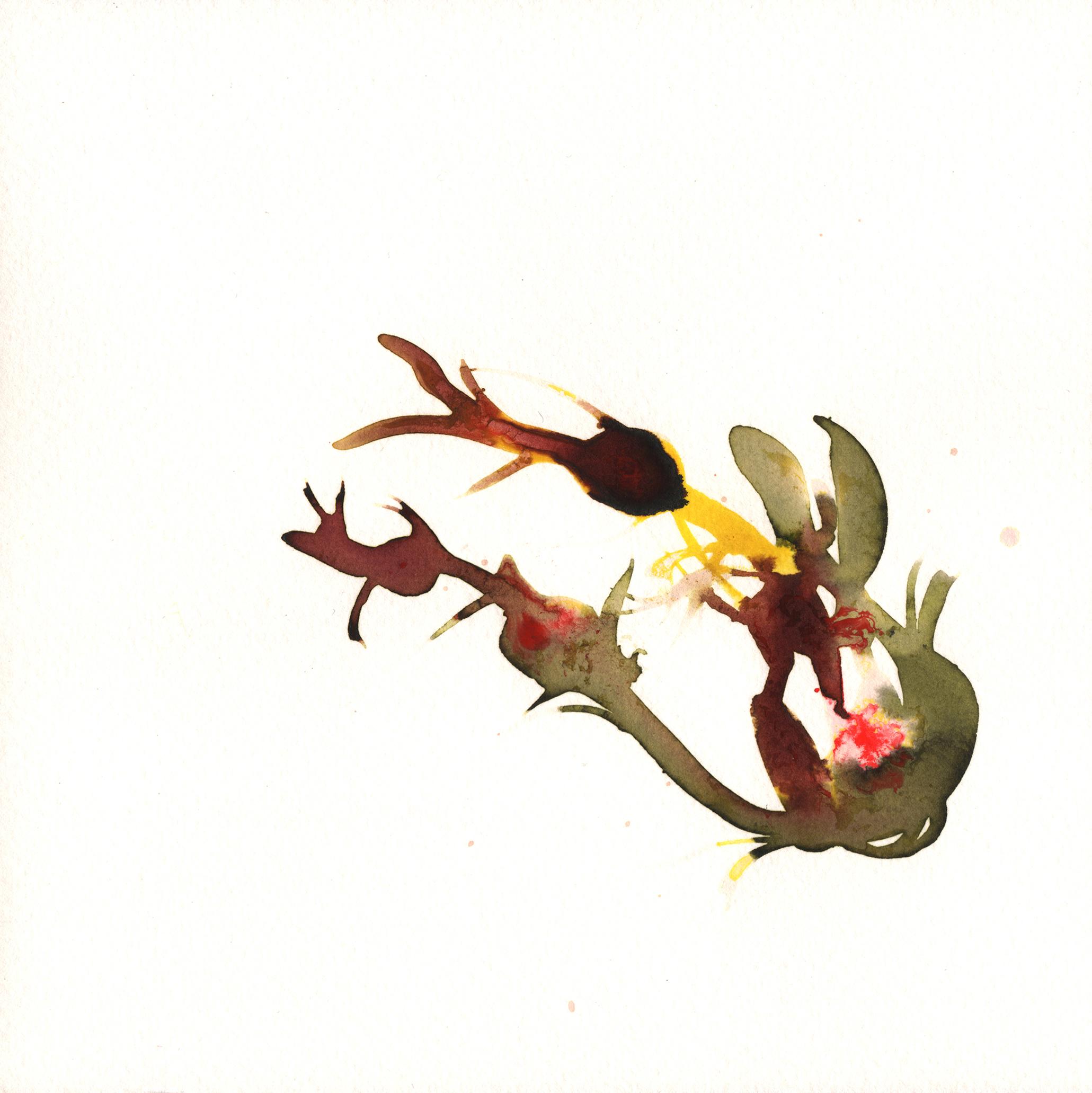 220.Seaweed.9.16.14jpg.jpg