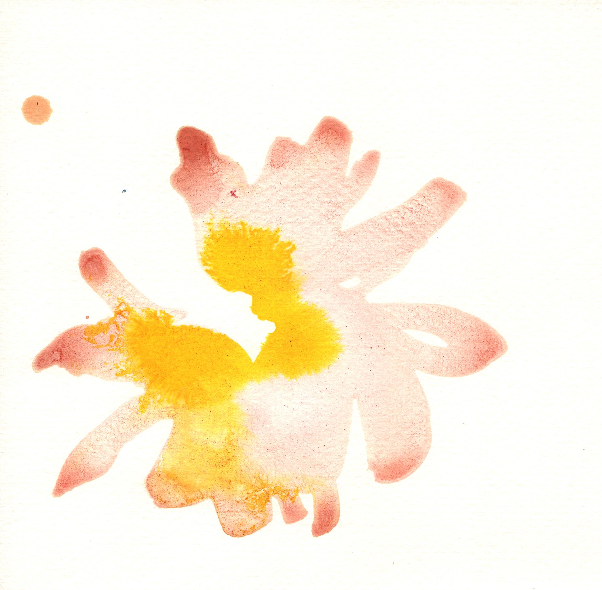225.Camellia.9.21.14.jpg