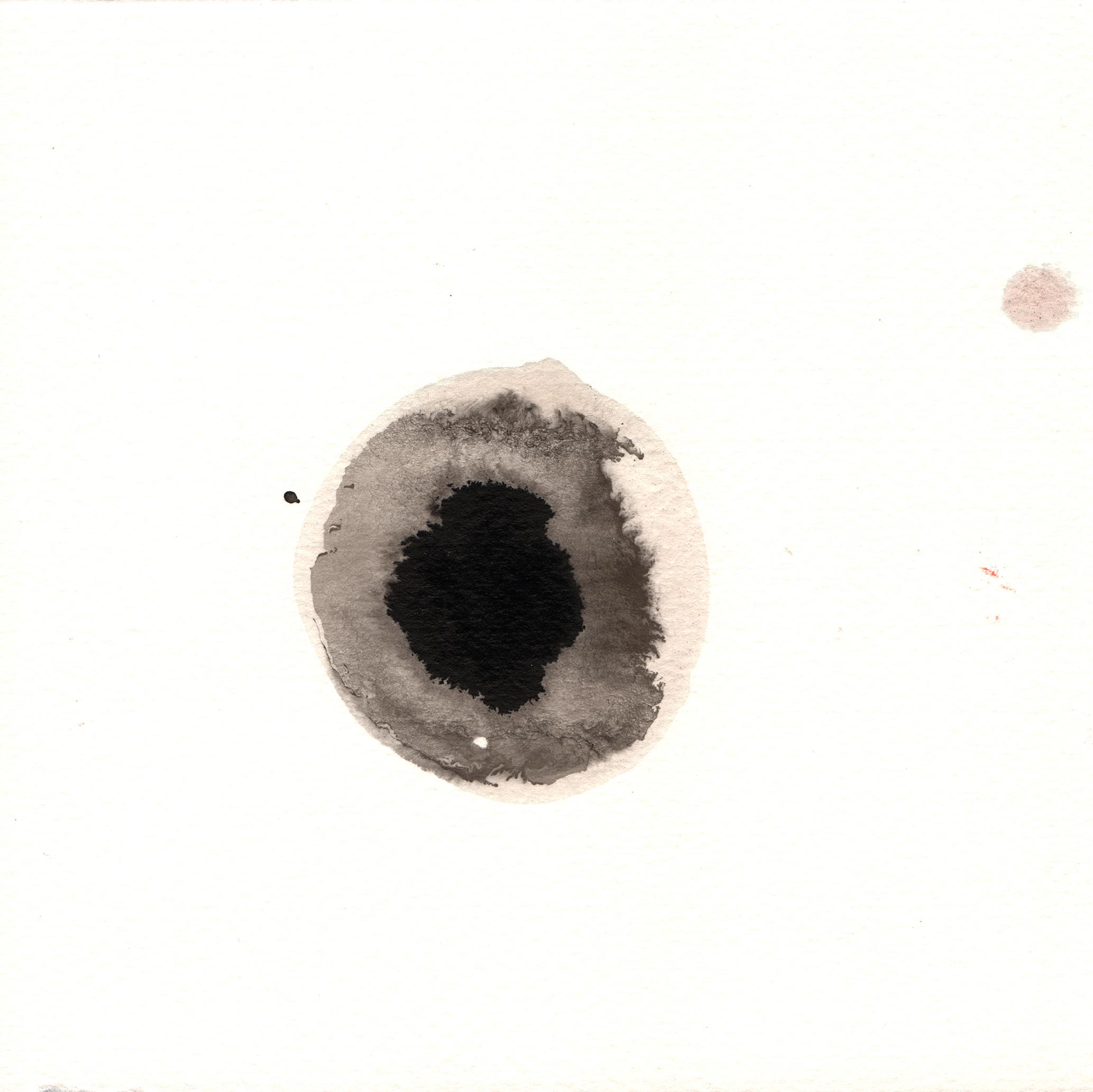 231.Lichen.9.27.14.jpg