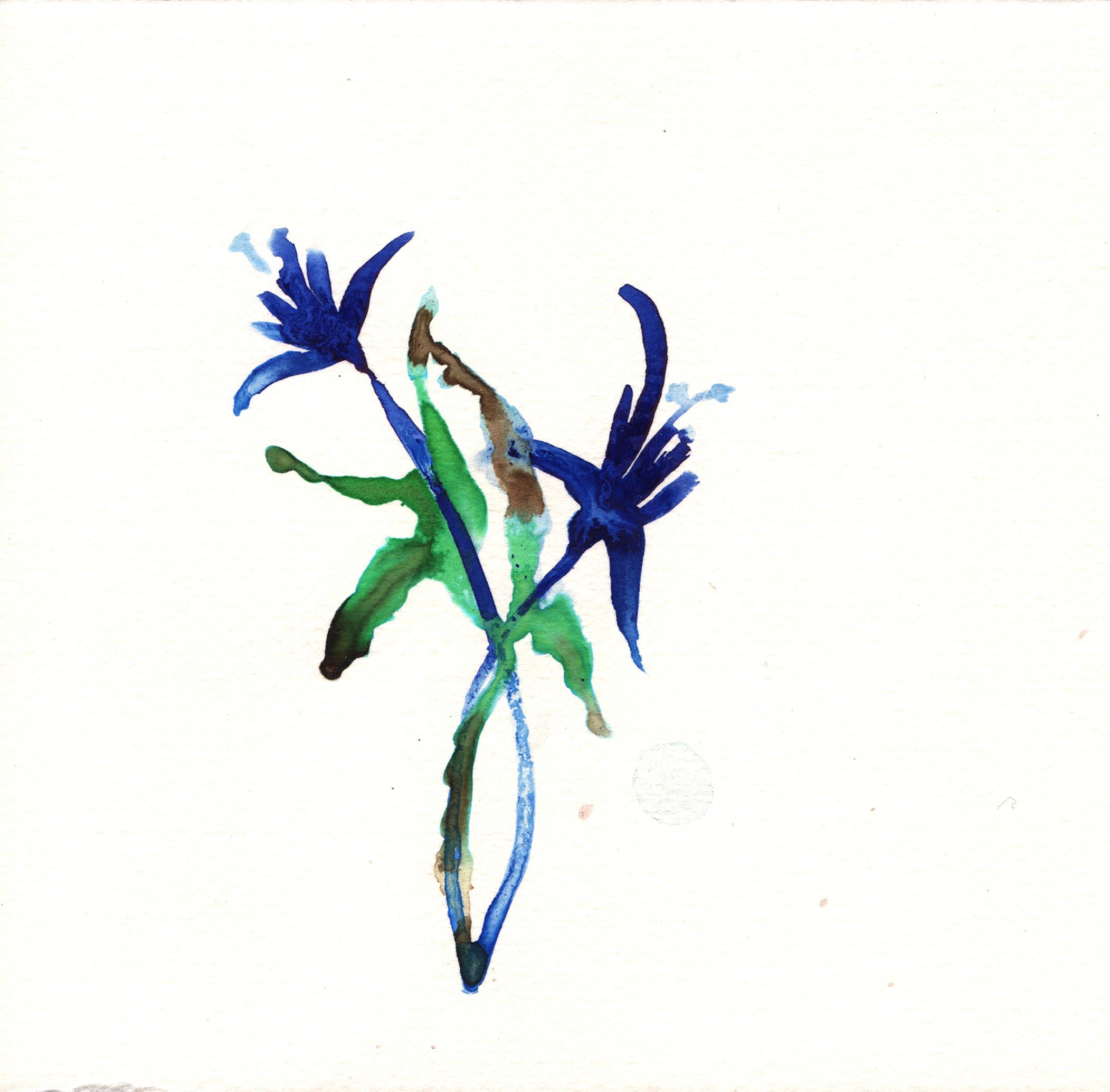 232.Daffodil.9.28.14.jpg